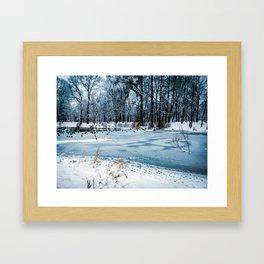 Frozen lake where ducks walk Framed Art Print