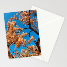 Calm Tree and Sky in Colorado (Colored) Stationery Cards