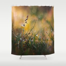 Beyond the Imagination Shower Curtain
