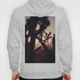 Joshua Trees at Sunset Hoody