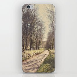 Road ∆ iPhone Skin