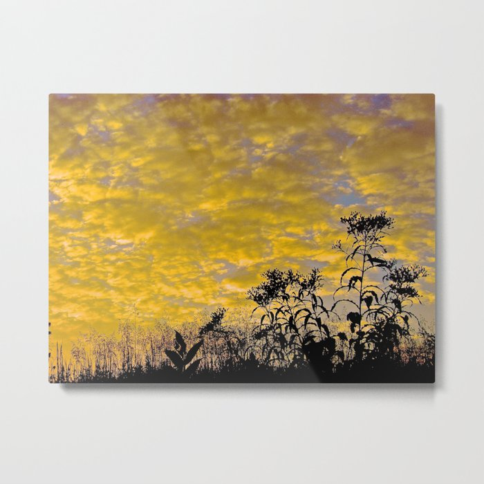 Evening Perfection Metal Print