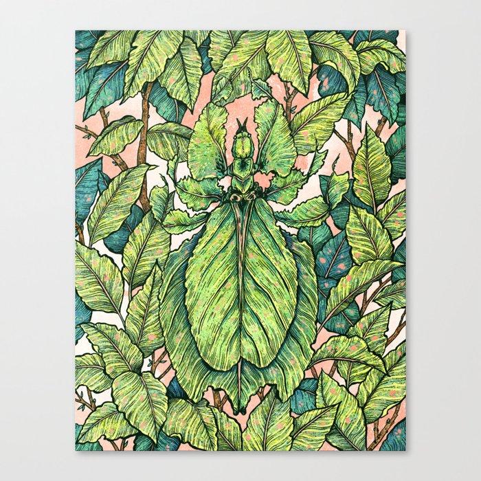 Leaf Mimic Canvas Print