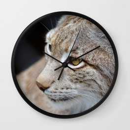 Young lynx close-up portrait Wall Clock