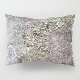 Lichen Rock Pillow Sham
