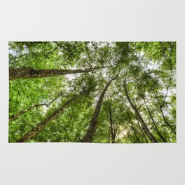 Nature Reaching For The Sky Rug