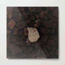 White stone on the gray stones, one of many, outstanding stone Metal Print