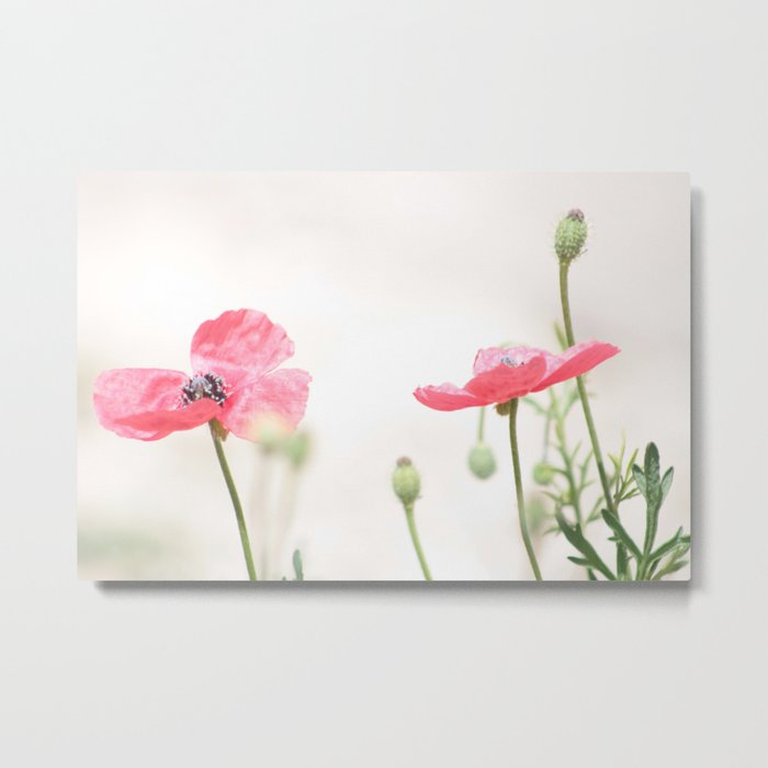 Summer's Popping In Metal Print