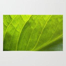 Graceful Leaf Abstract 2 Rug
