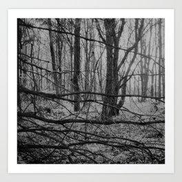 Patchwork forest Art Print