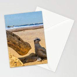 Funny meercats sitting in shadow in sunny day, cute animals Stationery Cards