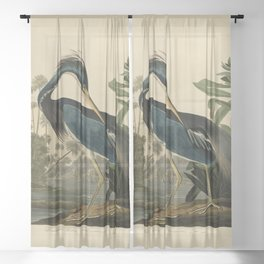 Vintage Bird Print - Birds of America - 217 Louisiana Heron (1838) Sheer Curtain