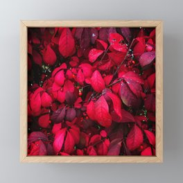 Autumn Leaves 4 Framed Mini Art Print