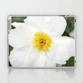 White Krinkled Peony Flower Laptop & iPad Skin