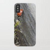ladybug iPhone & iPod Cases featuring Ladybug by Zen and Chic