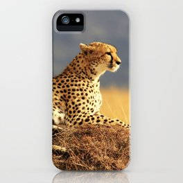 Cheetah on the hill iPhone Case