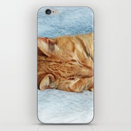 Sleepy Kitty iPhone Skin