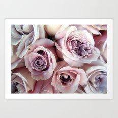 The Palest Roses Art Print