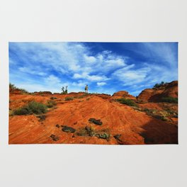 Snow Canyon Rug