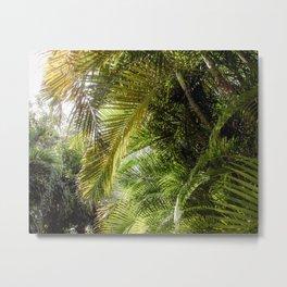 Giant Palms Metal Print