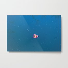 A pink blossom floating in a contrast blue lake Metal Print