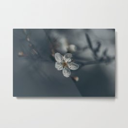 The somber flower Metal Print