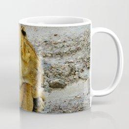 Simba Stroller Coffee Mug