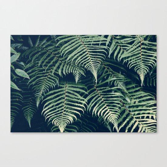 Fern Beach Canvas Print