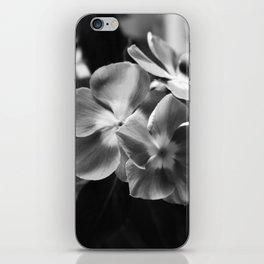 Simple Elegance iPhone Skin