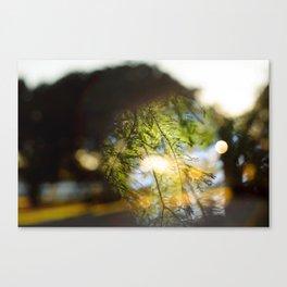 Transitory Utopia #5 Canvas Print