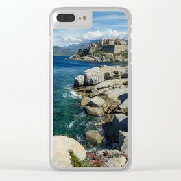 Flowers on the rocks Clear iPhone Case