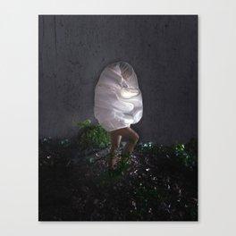 Spirit Guide Canvas Print
