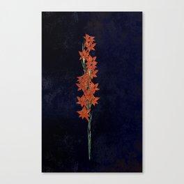Gash Canvas Print