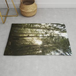 Washington Light Rays Rug