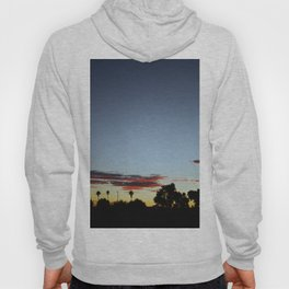 Sunset In The Park Hoody