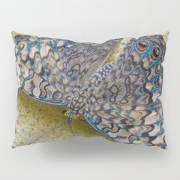 Turquoise and Sand Butterfly by Teresa Thompson Pillow Sham