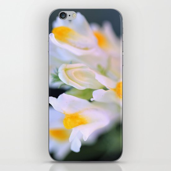 Darling Buds iPhone & iPod Skin