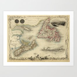Map of Newfoundland 1851 Art Print