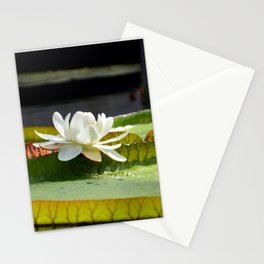 Victoria Lily Stationery Cards
