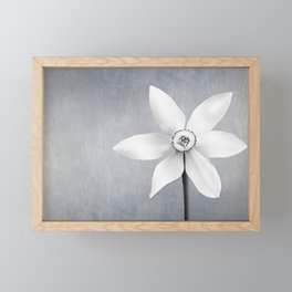 Botanical Shadows Framed Mini Art Print