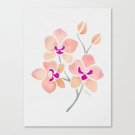 Orchids - Just Peachy Watercolor Orchids Canvas Print