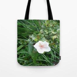 soft pink flower Tote Bag