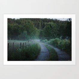 Norwegian Foggy Forest Art Print