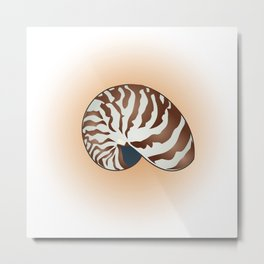 Nautilus Shell Orange Metal Print