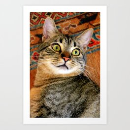 I'm Ready For My Close-up... Art Print