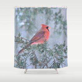 Sleet Cardinal Shower Curtain