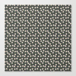 Daisies and Charcoal Pattern Canvas Print
