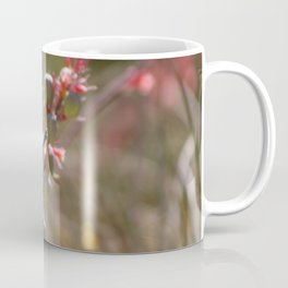 Hummingbird Flying To Red Yucca 1 in 3 Coffee Mug