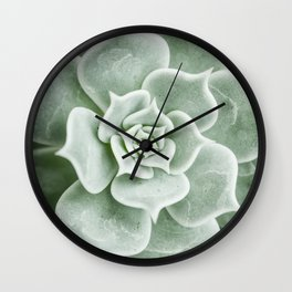 Succulent lover close up view Wall Clock