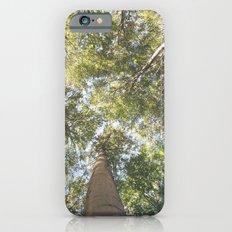 woodland 3436 iPhone 6s Slim Case